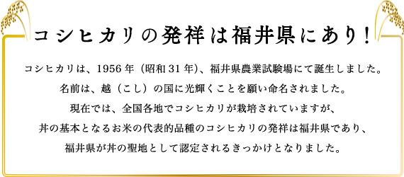 1015_福井発コシヒカリ_02